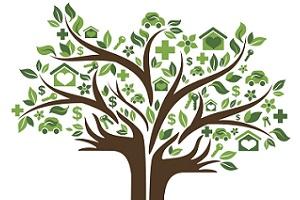 Solar decision tree